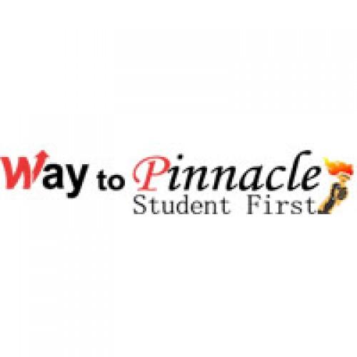 Way to Pinnacle