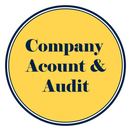 Company Accounts & Audit