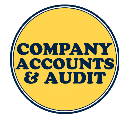 Company Accounts and Auditing Practices