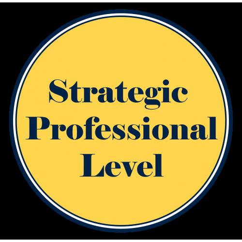 Strategic Professional Level