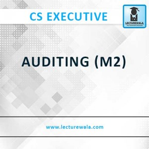 AUDITING (M2) (2)