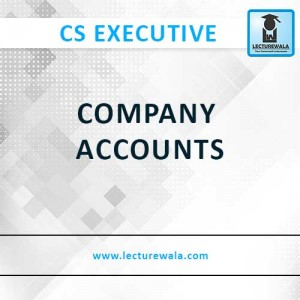 COMPANY ACCOUNTS (1)