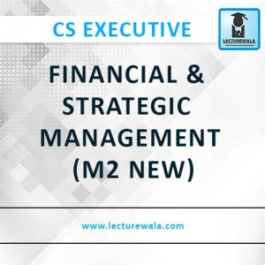 Financial & Strategic Management (M2 New) (2)